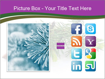 Fir branch with cone PowerPoint Template - Slide 21