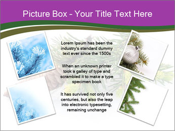 Fir branch with cone PowerPoint Template - Slide 24