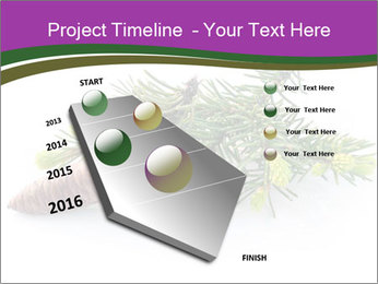 Fir branch with cone PowerPoint Template - Slide 26