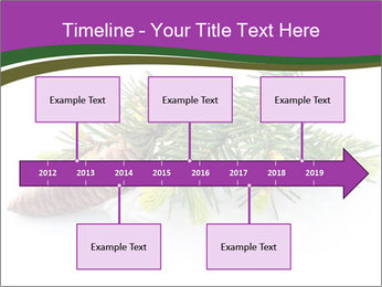 Fir branch with cone PowerPoint Template - Slide 28