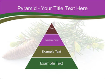 Fir branch with cone PowerPoint Template - Slide 30