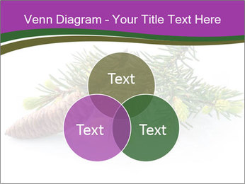 Fir branch with cone PowerPoint Template - Slide 33