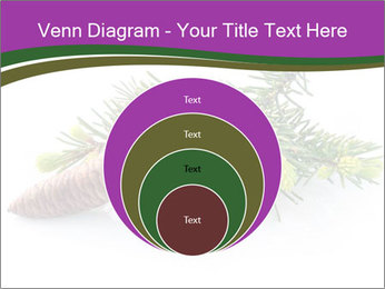 Fir branch with cone PowerPoint Template - Slide 34