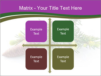 Fir branch with cone PowerPoint Template - Slide 37