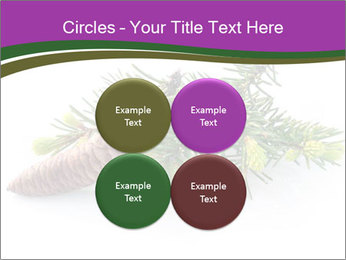 Fir branch with cone PowerPoint Template - Slide 38