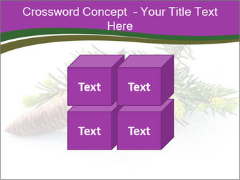 Fir branch with cone PowerPoint Template - Slide 39