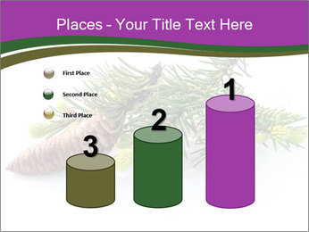 Fir branch with cone PowerPoint Template - Slide 65