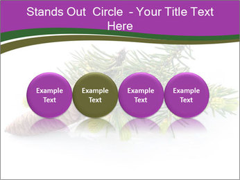 Fir branch with cone PowerPoint Template - Slide 76