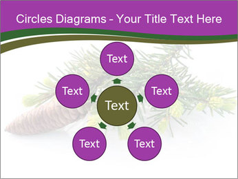 Fir branch with cone PowerPoint Template - Slide 78