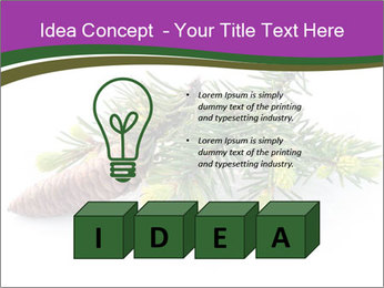 Fir branch with cone PowerPoint Template - Slide 80