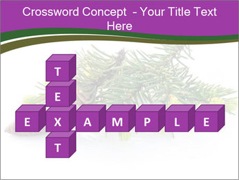Fir branch with cone PowerPoint Template - Slide 82