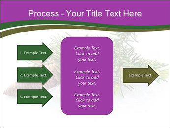 Fir branch with cone PowerPoint Template - Slide 85