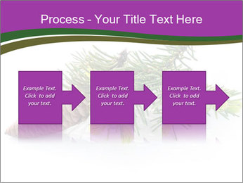 Fir branch with cone PowerPoint Template - Slide 88