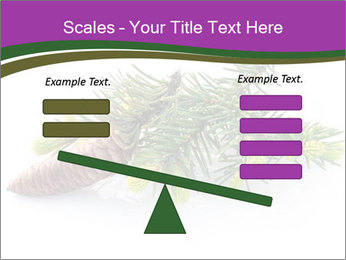 Fir branch with cone PowerPoint Template - Slide 89