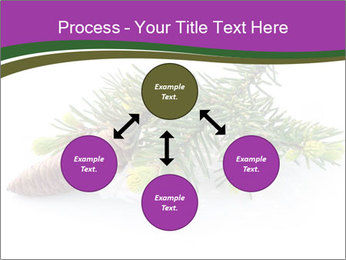 Fir branch with cone PowerPoint Template - Slide 91
