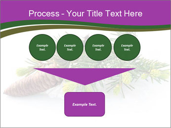 Fir branch with cone PowerPoint Template - Slide 93