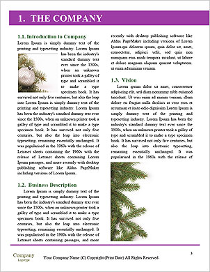 0000090493 Word Template - Page 3
