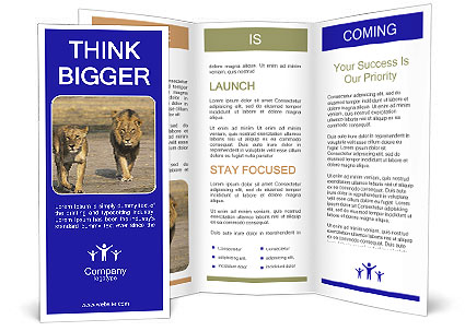0000090516 Brochure Template