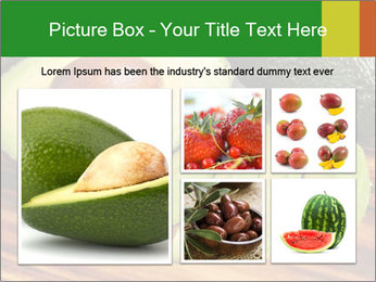Sliced avocado PowerPoint Template - Slide 19