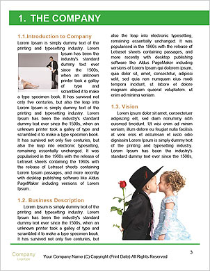 0000090526 Word Template - Page 3