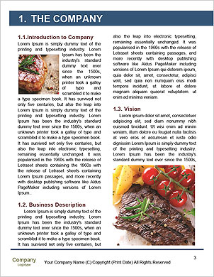 0000090527 Word Template - Page 3