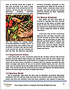 0000090527 Word Templates - Page 4