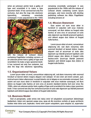 0000090527 Word Template - Page 4