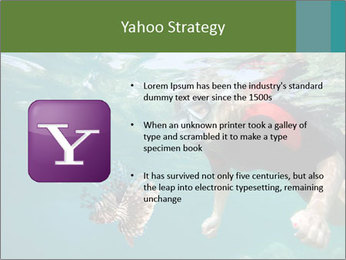 Young woman snorkeling PowerPoint Template - Slide 11