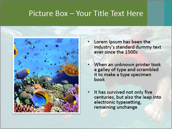 Young woman snorkeling PowerPoint Template - Slide 13