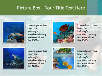 Young woman snorkeling PowerPoint Template - Slide 14