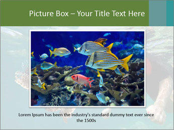 Young woman snorkeling PowerPoint Template - Slide 16