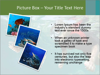 Young woman snorkeling PowerPoint Template - Slide 17