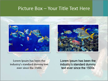 Young woman snorkeling PowerPoint Template - Slide 18