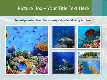 Young woman snorkeling PowerPoint Template - Slide 19