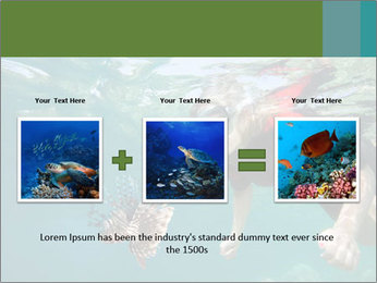 Young woman snorkeling PowerPoint Template - Slide 22