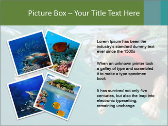 Young woman snorkeling PowerPoint Template - Slide 23