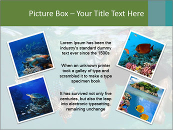 Young woman snorkeling PowerPoint Template - Slide 24