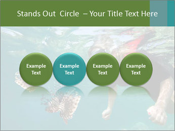 Young woman snorkeling PowerPoint Template - Slide 76