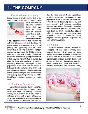0000090536 Word Template - Page 3