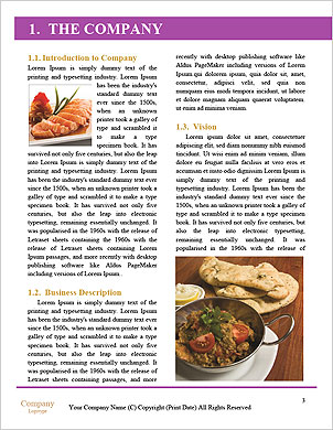 0000090540 Word Template - Page 3