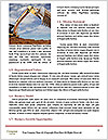 0000090541 Word Templates - Page 4