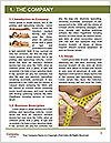 0000090543 Word Templates - Page 3