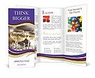 0000090545 Brochure Template
