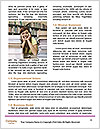 0000090547 Word Template - Page 4