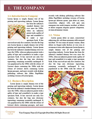 0000090550 Word Template - Page 3