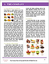 0000090557 Word Templates - Page 3