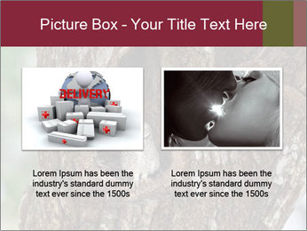 Little Owl PowerPoint Template - Slide 18