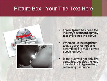 Little Owl PowerPoint Template - Slide 20