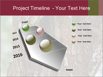 Little Owl PowerPoint Template - Slide 26