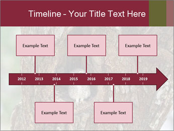 Little Owl PowerPoint Templates - Slide 28